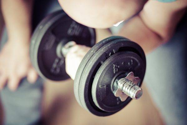 Programme Musculation Debutant